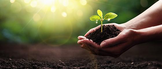 Klima und Umwelt